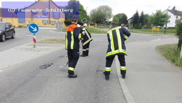 Hilfeleistung vom 03.05.2018  |  (C) Feuerwehr Schiltberg (2018)