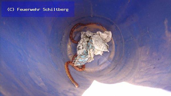 Hilfeleistung vom 19.05.2018     (C) Feuerwehr Schiltberg (2018)